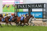 Racing action returns to the new Pakenham Racecourse this week with Empire Guineas Day.  138113  Picture: STEWART CHAMBERS